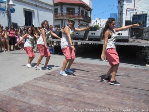 bioagaete cultural solidario 2011 20130729 2000560309